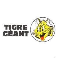 circulaire tigre géant circulaire - flyer - catalogue